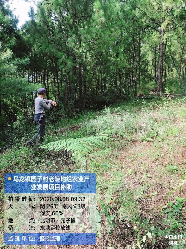 乌龙镇园子村老转地组农业产业发展项目简报